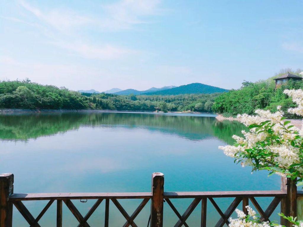 春末夏初,大雨过后,龙潭湖公园美出了天际
