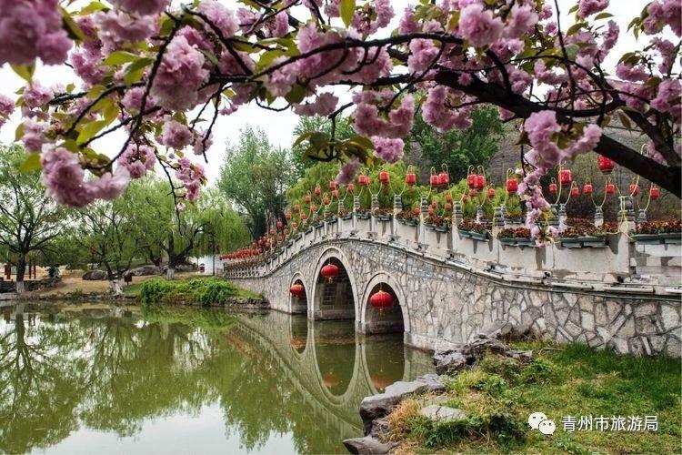 细雨微风中的青州,怎一个美字了得!